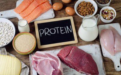 protein-degeri-yuksek-besin-kaynagi